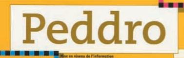 logo-peddro-unesco